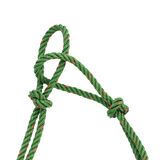 Green nylon rope tied the knot Stock Images