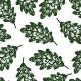 Green Oak leaves seamles background Royalty Free Stock Photo