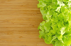Green oak salad on wood board. Green oak lettuce salad vegetable on wood board royalty free stock images