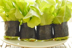 Green oak and sausage wrapped by seaweed on plate Stock Photo
