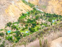 Green oasis with blue swimming pools on the bottom of Colca Canyon in Peru royalty free stock images