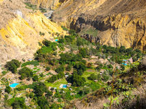 Green oasis on the bottom of Colca Canyon in Peru Stock Photography