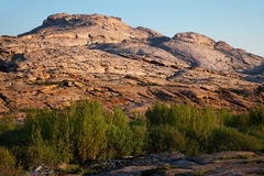 Green oasis in Desert mountains Royalty Free Stock Images
