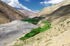 Green oasis in Himalaya Stock Photo