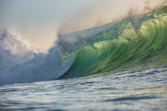 Green Ocean Wave Translucent with sunset light. Beautiful Ocean Background Big Shorebreak Wave for Surfing. Hawaiian swell for sport activity. Power and Energy Stock Image