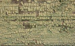 Green ochre shade coloured cracked paint peeling on wood texture. Royalty Free Stock Photo