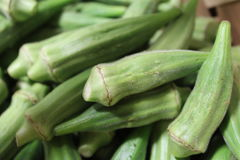 Green Okra royalty free stock photo