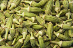 Green Okra Crop Texture Royalty Free Stock Photo