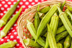 Green Okra Vegetable Royalty Free Stock Photography