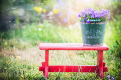 Green old bucket with garden campanula flowers on red little stool over summer nature background Stock Photos