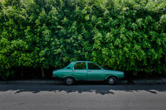 Green old car in front of green hedge Royalty Free Stock Photo