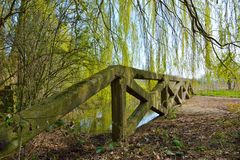 Green old concrete abandoned bridge Royalty Free Stock Photo