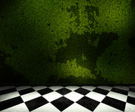 Green Old Room Background Stock Images
