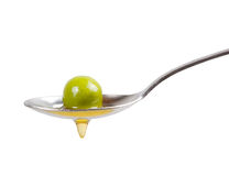 Green olive Royalty Free Stock Photos