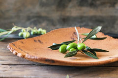Green olive branch. Green and black olive branch on clay plateover wooden table Royalty Free Stock Photography