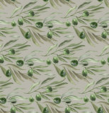 Green olive branch with leaves on gray background. Stock Image
