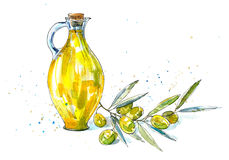 Green olive branch and olive oil in the glass bottle. Food picture.Watercolor hand drawn illustration Stock Photography