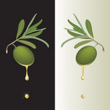 Green olive drop Royalty Free Stock Images
