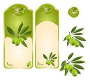 Green olive label. A set of green olive labels width extra branches. Olive logo Stock Photography