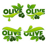 Green olive leaves. Lettering compositions and oil splashes , vector collection of logo templates, labels, symbols Royalty Free Stock Image