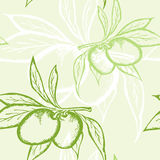 Green olive seamless pattern Stock Images