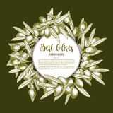 Green olive wreath sketch poster design Royalty Free Stock Photos