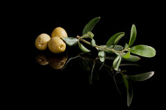 Green olives. Stock Image
