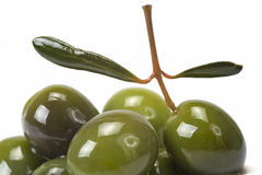 Green olives covered in oil royalty free stock images