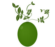 Green olives illustrated Stock Photos