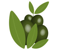 Green olives illustrated Stock Photography