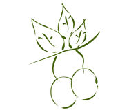 Green olives illustrated Royalty Free Stock Photography