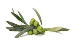 Green olives with leaves Royalty Free Stock Images