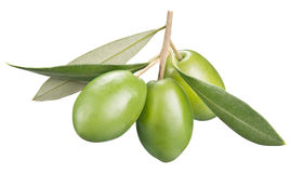 Green olives with leaves on a white background. Royalty Free Stock Photography