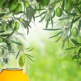 Green olives and olive oil bottle Royalty Free Stock Photos