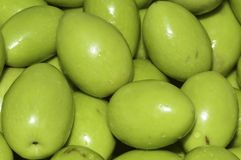 Green olives. Olive green, very good to be retained in brine or dunks with spices and spicy product from which we get a good oil Royalty Free Stock Photos