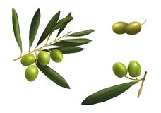 Green olives set Royalty Free Stock Photography
