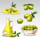 Green olives set. Illustration of green olives set Stock Photography