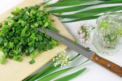 Green onion. Blooming. Whole and sliced scallions on the wooden plate with knife Royalty Free Stock Photography