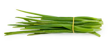 Green onion. Bunch onion isolated on the white background Royalty Free Stock Images