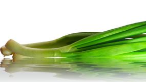Green onion. In water royalty free stock image
