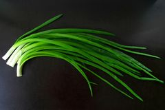 Green onion on black background royalty free stock photo