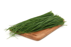 Green onion on a board Royalty Free Stock Photo