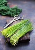 Green onion Royalty Free Stock Photo