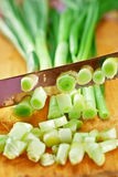 Green Onion catted with knife Royalty Free Stock Images