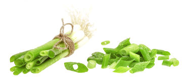 Green onion. Chives. Stock Images
