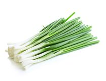 Green onion close-up isolated on a white background. Royalty Free Stock Photos