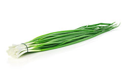 Green onion close-up isolated on a white background. Food concept Stock Photos