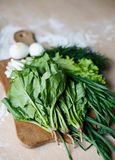 Green onion, dill, sorrel, lettuce and spinach on the table Royalty Free Stock Photos