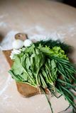 Green onion, dill, sorrel, lettuce and spinach on the table. Green onions, dill, sorrel, lettuce and spinach Stock Images