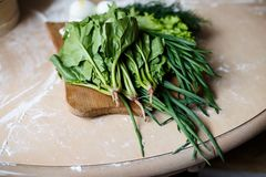 Green onion, dill, sorrel, lettuce and spinach on the table Royalty Free Stock Photo